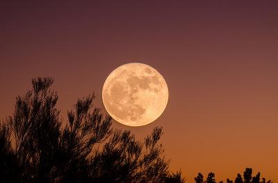 本日さそり座満月、女性は身体から「循環」のメッセージを受け取る日