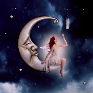 月とともに生きる心の旅人