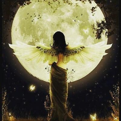誰でも知っているエクササイズに「おうし座満月」の魔法をかけて女性の美を応援します!