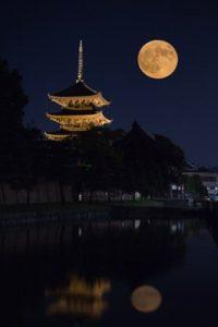 中秋と仲秋は別!?本日、一年に一度の「中秋」の名月を観るために。
