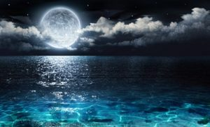 11月4日(土)牡牛座満月に月を知り、自分らしく輝くための新たな自分に出逢う一日