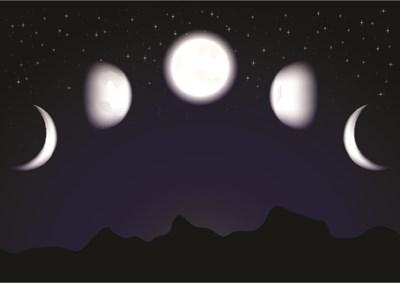 月が教えてくれる命の循環