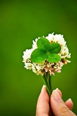 【月フェス】月と植物の力でおまじないをかけて、世界でひとつだけのロールオン香水を作ってみませんか?