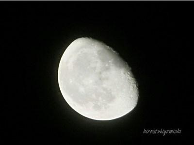 なんとなくの不調が続く時、意識したいのは「リズム」。太陽と月のリズムを取り入れる為の5秒から始められる習慣とは?