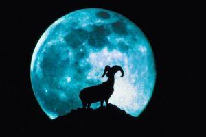 2018年のミッションを、月の占星術、月花でみる