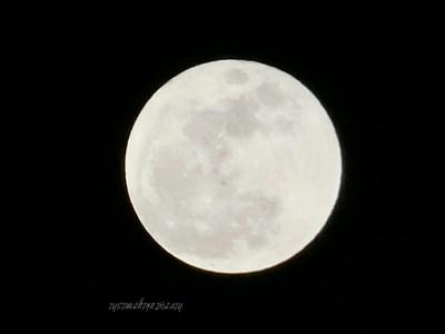 """特別な""""HAPPY""""が盛り込まれた、しし座満月は1月31日。  ブルームーンにブラッドムーン、皆既月食と特別づくしの月のエネルギーを満喫するには?"""