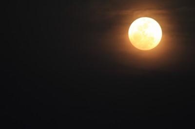 宿曜でその年の運勢がわかる!!月のリズムとの関係とは。