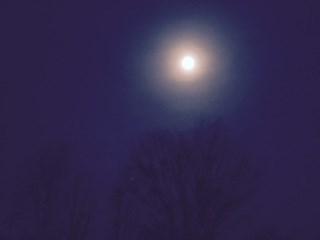 月星座 乙女座のエネルギーの力を借りて、触れて食べて効果2倍増しのセルフケア!