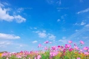 9月25日 秋の満月の一日を「ありのままの自分」と「自分改革」の一日に!