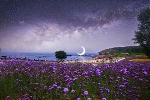"""本当の自分を知る月花(宿曜)占星術~""""私と貴方""""を知って楽に生きよう~"""