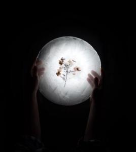 「感謝と祈りのふたご座満月」 輝く豊さを受け取り、引き寄せる為の 月星座別、連休の過ごし方と感謝の言葉