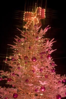 12月23日、平成最後の蟹座満月はいつもよりすごい理由って?