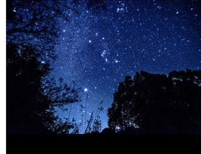 寒さや忙しさに疲れを感じる、そんな時あなたも大切な人も癒される「うお座のエネルギー」が月とともに降り注ぐ。