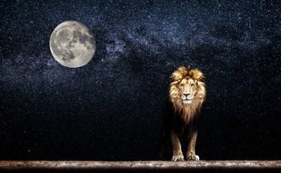 満月まであと2日。月星座しし座を味方にして2019年幸運を呼び込もう