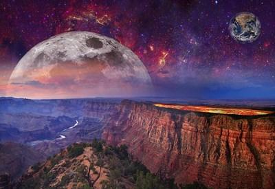 明日は下弦の月。それ以降は月の手放し力&俯瞰力を味方にカラダも住まいも思考も整えるチャンスの1週間に。