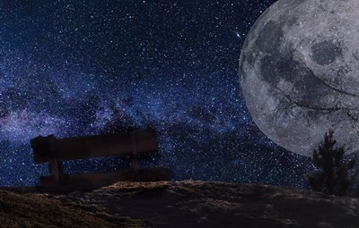 月エネルギーに大きな影響が!12星座の得意分野、守護惑星etcを徹底チェック。【蟹座・獅子座編】