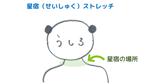 首筋のストレッチ~星宿<br>【宿曜ストレッチで不調解消セルフケア】