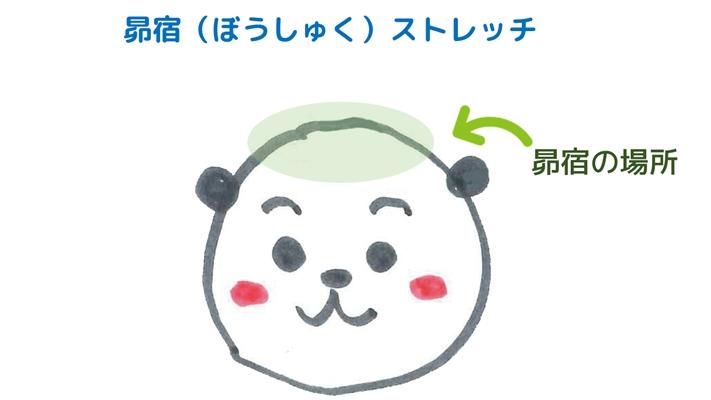 昴宿<br>【宿曜ストレッチで不調解消セルフケア】