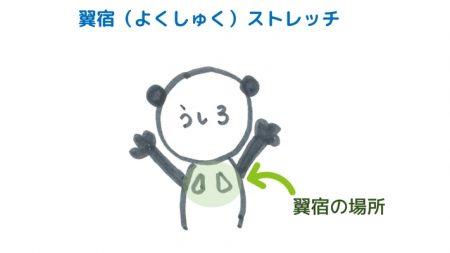 まゆのストレッチ~觜宿<br>【宿曜ストレッチ】