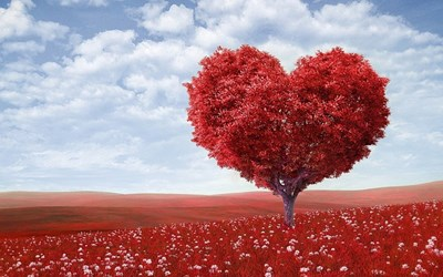 〜心臓のリズムが 私のリズム〜 私を整えて 豊かな調和の世界のスタートを!