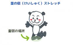 ひざのストレッチ~奎宿<br>【宿曜ストレッチ】