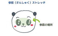 目のストレッチ~参宿<br>【宿曜ストレッチ】