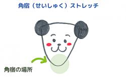 あごのストレッチ~角宿<br>【宿曜ストレッチ】