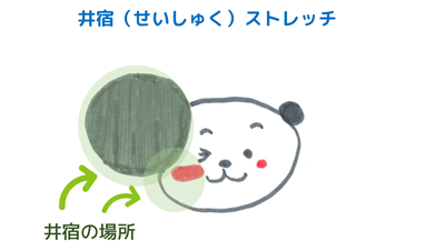 ほほのストレッチ~井宿<br>【宿曜ストレッチ】