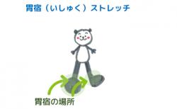 足首のストレッチ~胃宿<br>【宿曜ストレッチ】