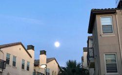 アメリカで感じた月のパワー~LAの月生活 part.1