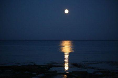 いつも私たちに届けてくれる。今日は、うお座の包み込むような優しい満月パワーを感じきろう!