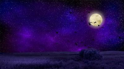 【月星座別】インナーチャイルドを癒す方法~さそり座編~