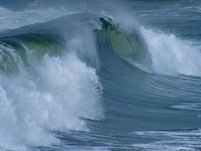変化の波に飲み込まれない!・・月光浴で静かな自分を取り戻す