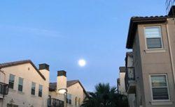 アメリカで感じた月のパワー~LAの月生活 part.7