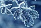 二十四節気から見る月よみ~立冬から小雪編~