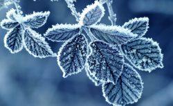 月と共に冬を迎えてデトックス、そして温まる。