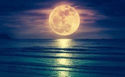 おひつじ座満月に始まりおうし座満月に終わる10月、あなたは何で満たされる?
