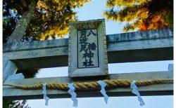 月よみまっぷ 〜静岡県藤枝市『月夜見神社(つきよみじんじゃ)』~