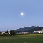 龍咲凜(りゅうえみり) 月よみ師Ⓡ