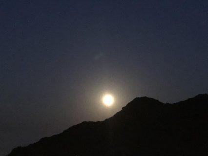 カラダの臓器と月の関係を知って月でやせる~脾臓~