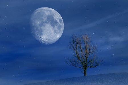 上弦の月~満月までは肝臓! 月の満ち欠けを利用した効果的なケア