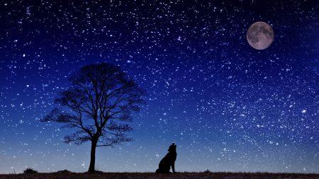 月星座と対応する色が知っていた! 困った人間関係の対処法 ~おひつじ座編~