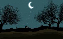 下弦の月から新月までは腎臓!~月の満ち欠けを利用した効果的なケア~