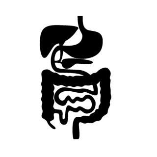 腸のお花畑に喜びを!「月リズム・バランスコンディショニング」 満月(+)期編