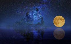 もうひとつの月の宿 インド占星術のナクシャトラが伝える月のメッセージ:プールヴァ・パールグニー