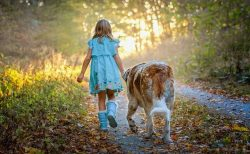 満月(ー)期は、自然の中を、いつもより大股で愛犬と散歩しよう!