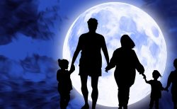 満月の今日は肝臓と心臓! ~月の満ち欠けを利用した効果的なケア~