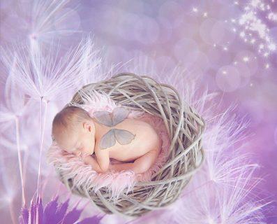 ツキを味方にしなやか子育ての始め方  ~Vol.8新月(+)期の赤ちゃん育て~